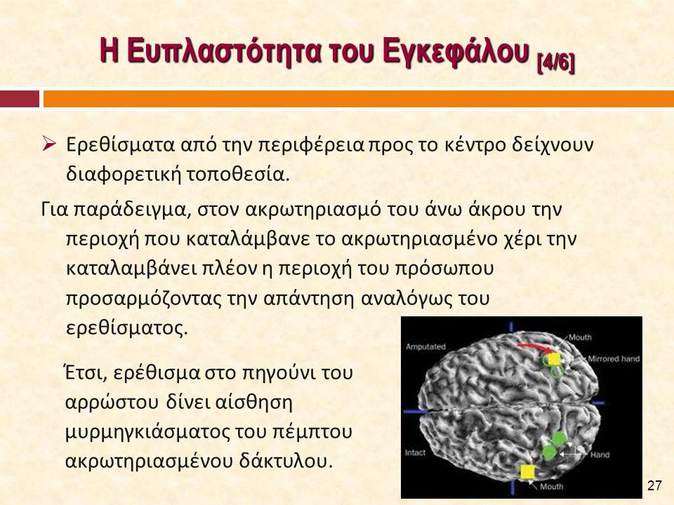 Η Ευπλαστότητα του Εγκεφάλου [5/6]